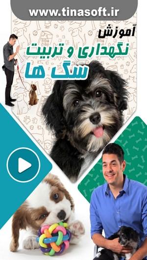 آموزش نگهداری و تربیت سگ های خانگی